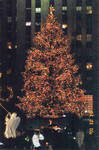 christmas tree in  the city by skellingtonjack6969