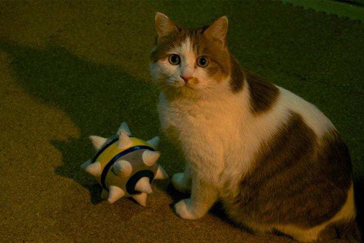 my TF2 cat by biggreenpepper
