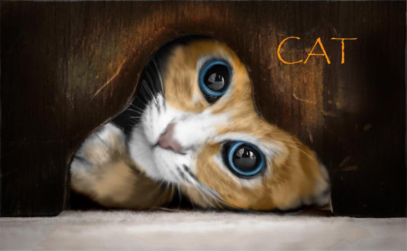 Cat by DemonaTheOperator