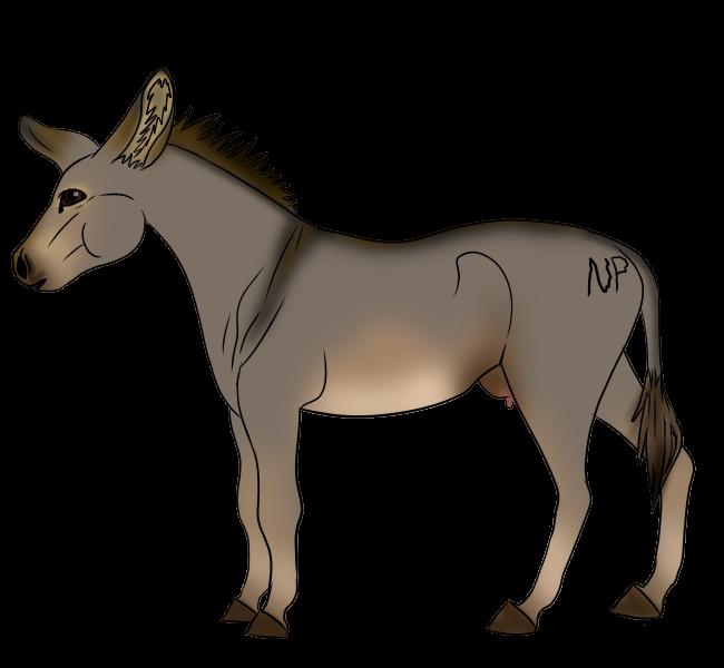 Donkey Mare1 by DemonaTheOperator
