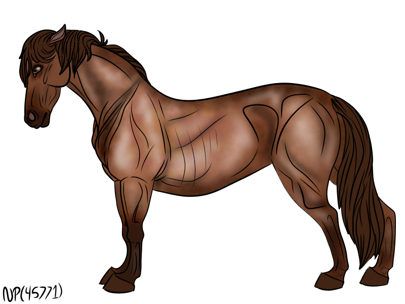 New Forest Pony by DemonaTheOperator