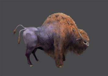 Purple Buffalo by rich4rt