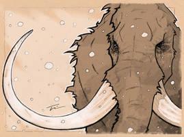 Snowy Mammoth by TWKeller