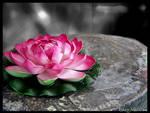 Fleur de Ren by Chat-Mall0ow