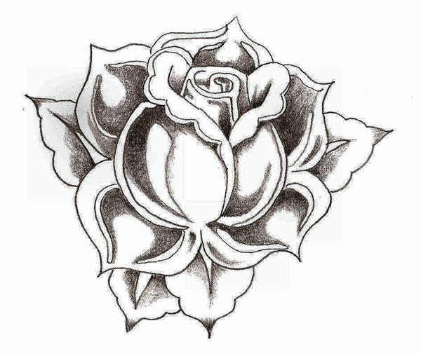 Rose By TheLob On DeviantArt