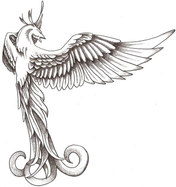 Phoenix 1 by TheLob on DeviantArt