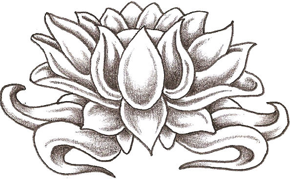 Lotus Flower by TheLob on DeviantArt