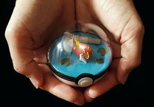 Poke Ball Terrarium - Magikarp