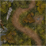 Forest Path Daytime