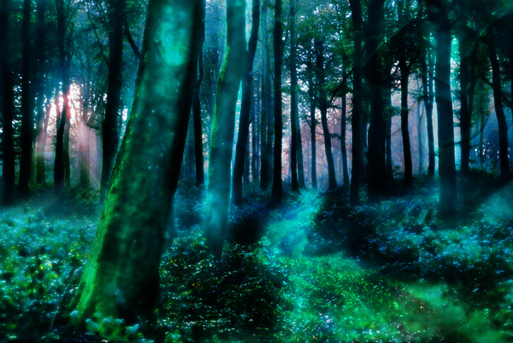 the_magic_forest_by_n0rth