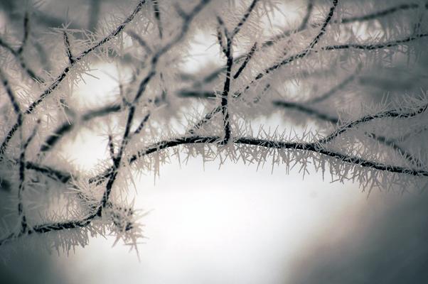 frozen by borderone
