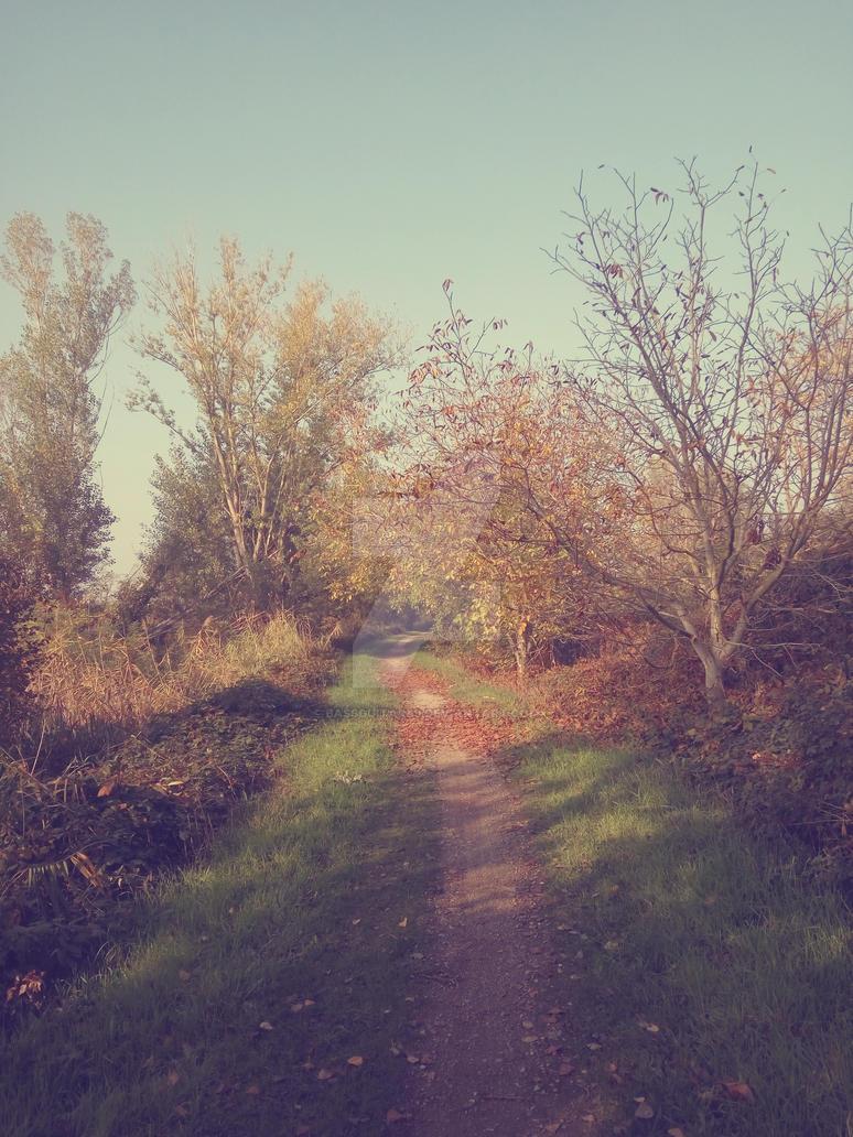 Autumn by BassGuitar89
