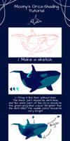 Orca-Shading Tutorial