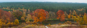 The sound of autumn colours