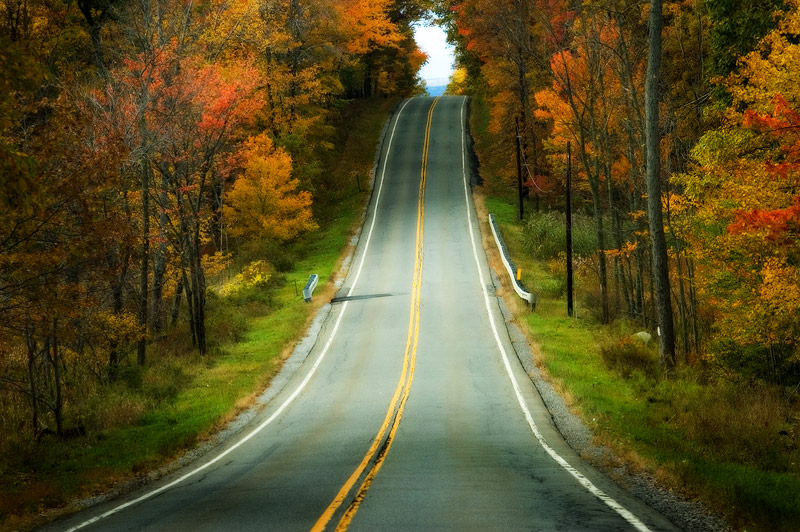 autumn road by rscorp