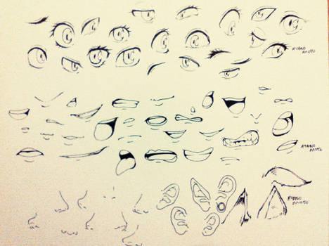 facial feature practice