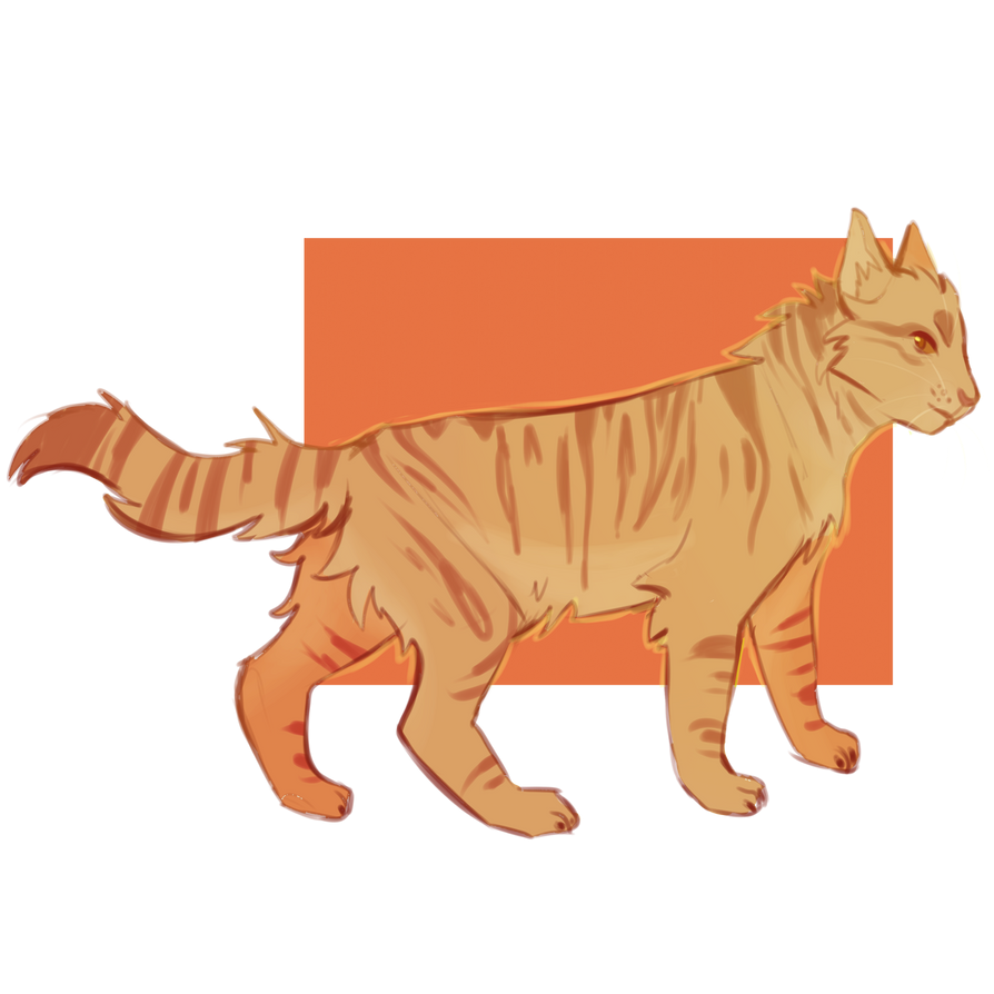 http://pre01.deviantart.net/5fb7/th/pre/i/2015/341/a/d/thornclaw_by_shimmerspirit-d9jes6e.png