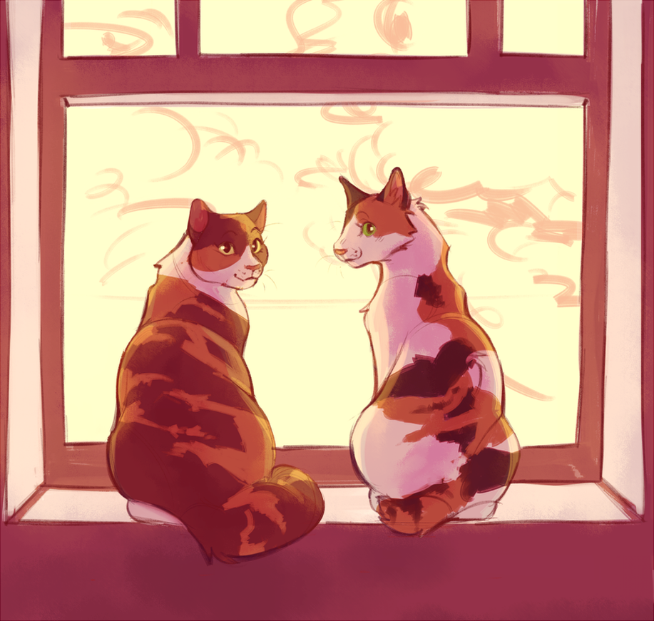Which Dawn Of The Clans Warrior Cat Are You: Bumble And Turtle Tail By Shimmerspirit On DeviantArt