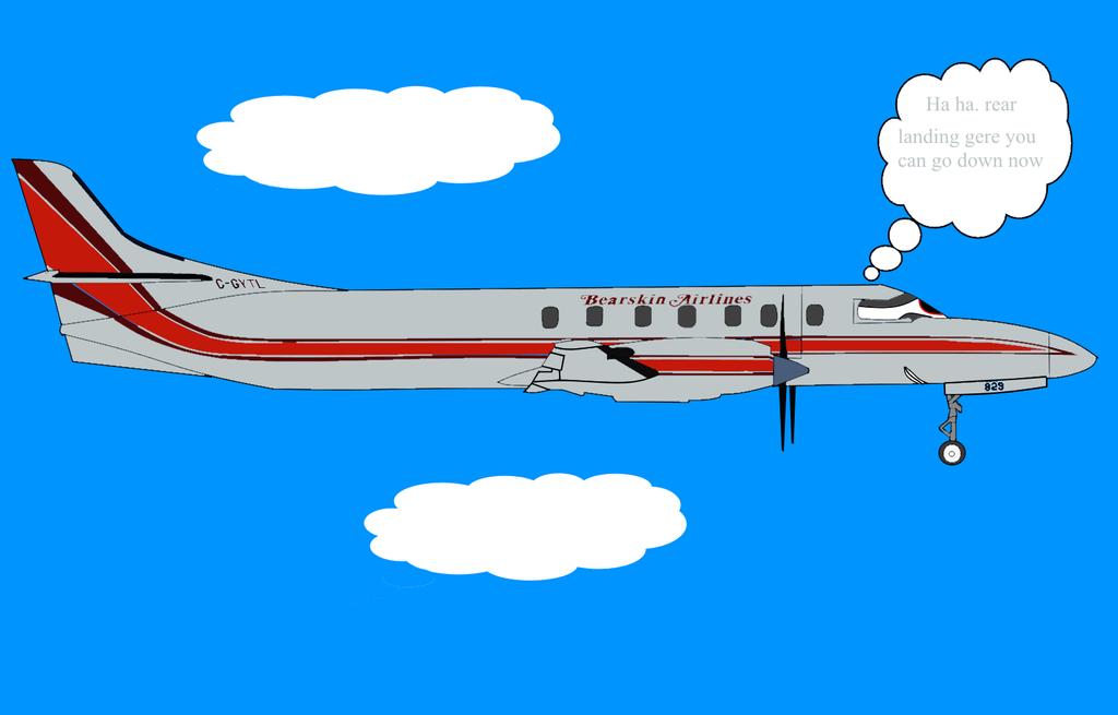 Bearskin airlinnes plane 829 AKA Chad in trouble by ...  Bearskin airlin...