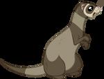 Ferret Vector