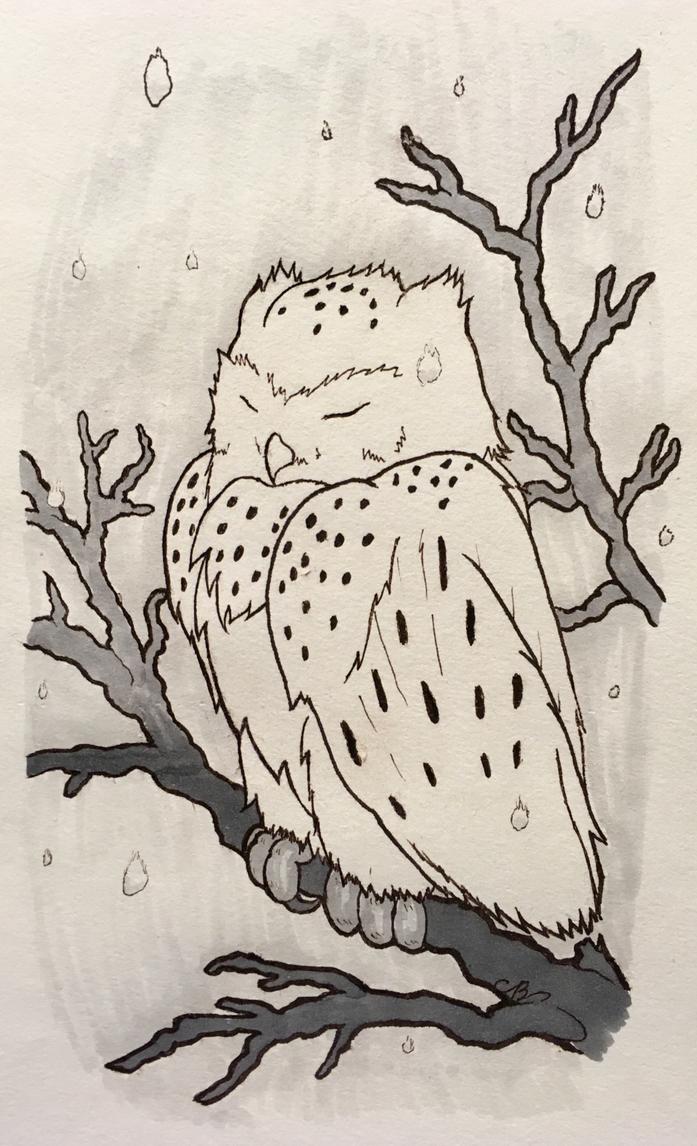 Owl by Nikolai-Bartolf