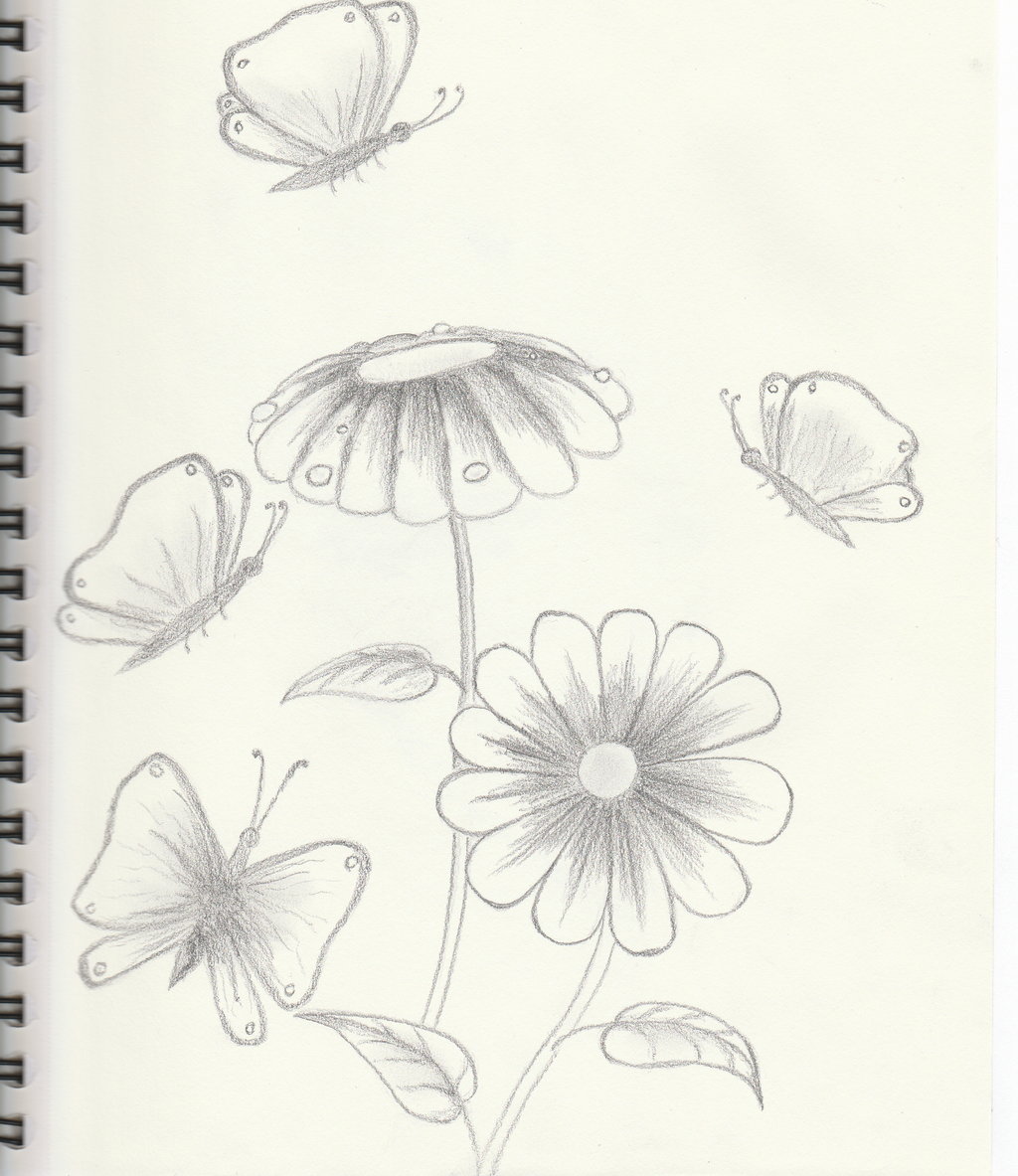 Sketch of flowers and butterflies by getupp