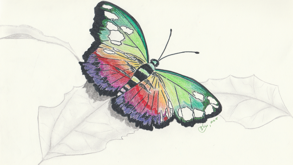 Rainbow butterfly by getupp