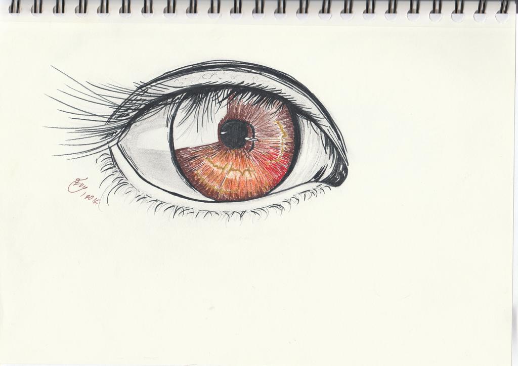 Eye 2 by getupp