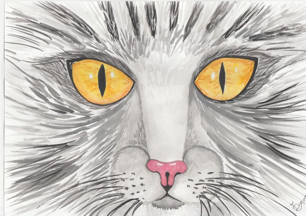 Yellow cat eye by getupp