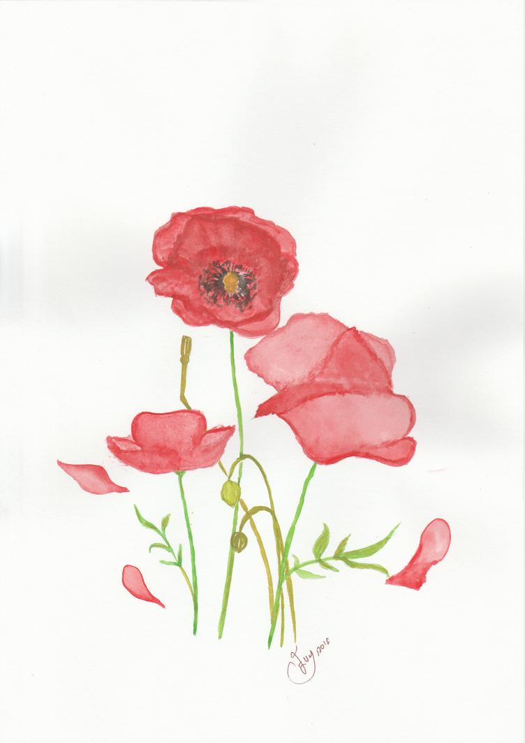 Red Poppy by getupp