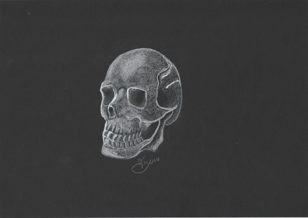 Skull on black by getupp