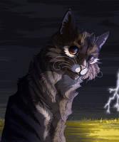 Leafpool | Warrior Cats