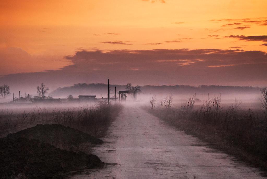 Morning mist by ancarosu