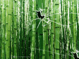 Broken vista bamboo trees by CypherVisor