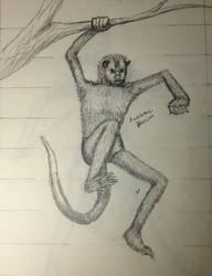 Awesome Possum by Ceeyena