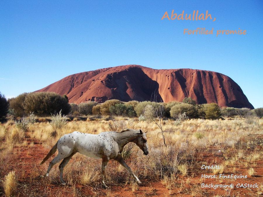 Erosaf's Foaling Thread Abdullah_by_erosaf-d39uwdq