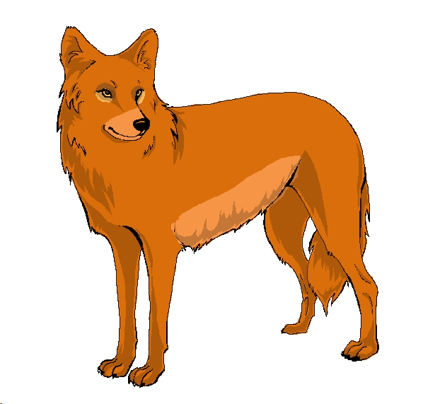 Ahadi ((wolf)) Simba_by_erosaf-d5ry5bo