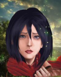 Mikasa by zulkiflqureshi