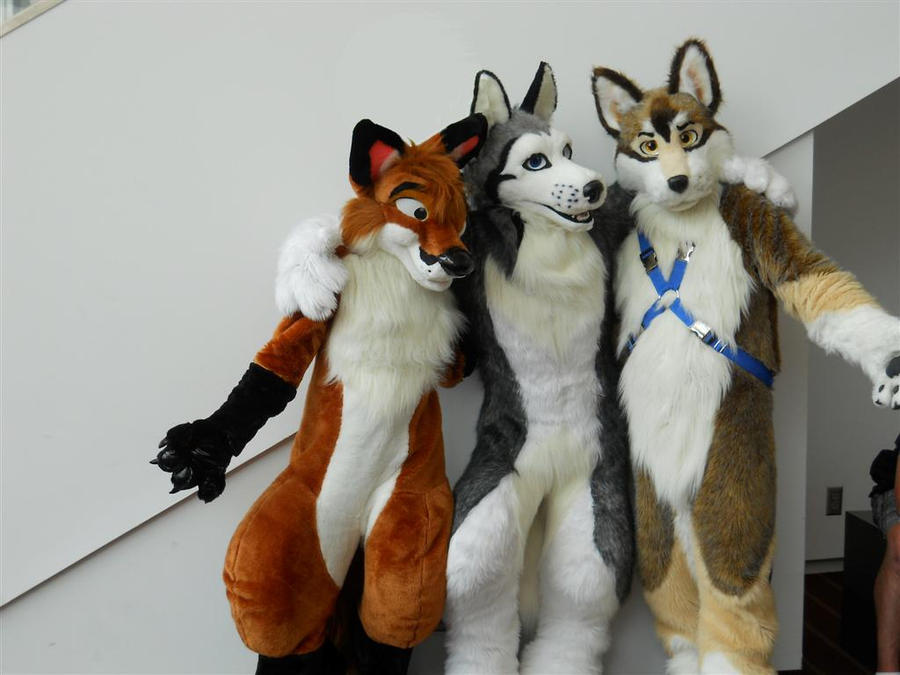 3 Fursuits By Ffex On DeviantArt