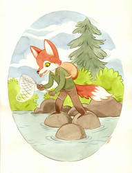 Fine Weather Fisher-Fox