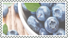 Blueberry stamp by rawfishing