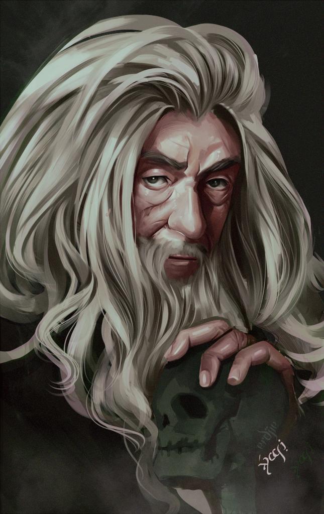 Gandalf the dark grey by ERDJIE