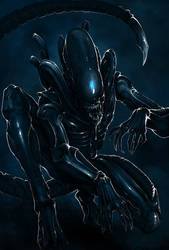 Xenomorph by RoyDante