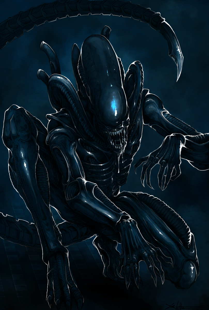1000+ images about Alien Xenomorph on PinterestXenomorph Queen Prometheus