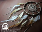 The Sun's Dream Catcher #2