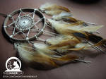 The Sun's Dream Catcher #3
