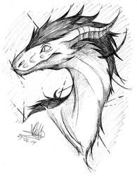 -math the dragon-