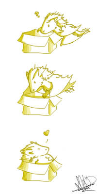 -the dragon of the box-