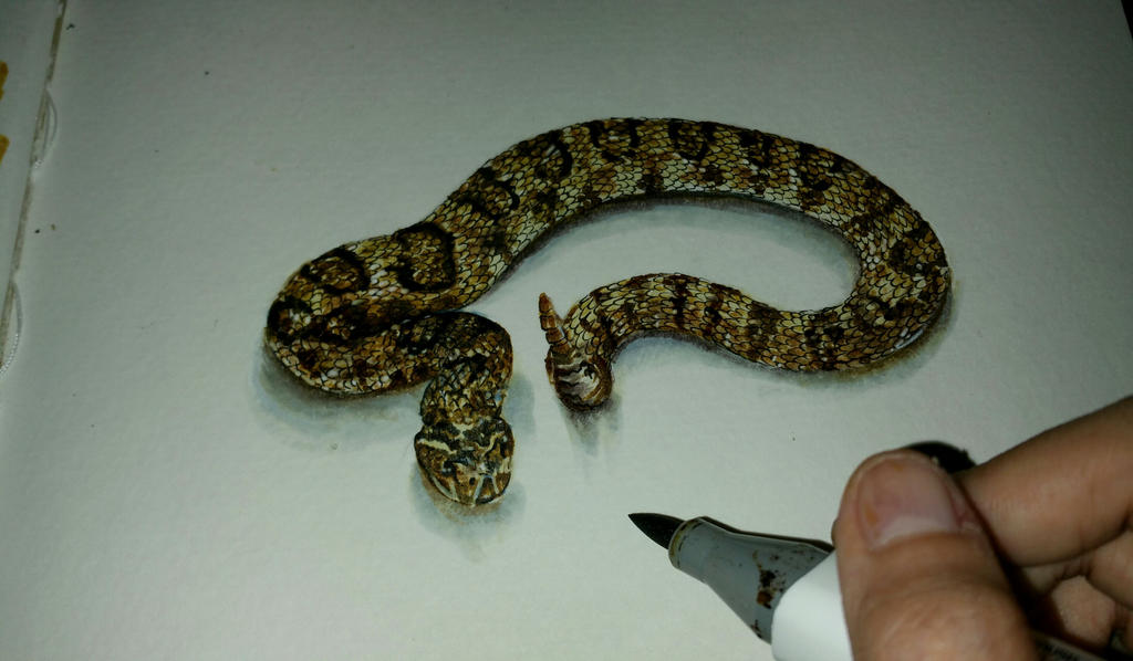 snake 3d drawing by Pr...