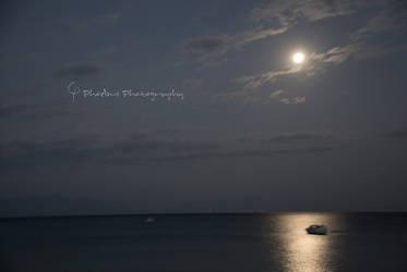 Moonlight Walk by leventis